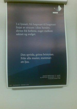 Inger Bråtveit & Cecilia Hansson: Loveprosjekt
